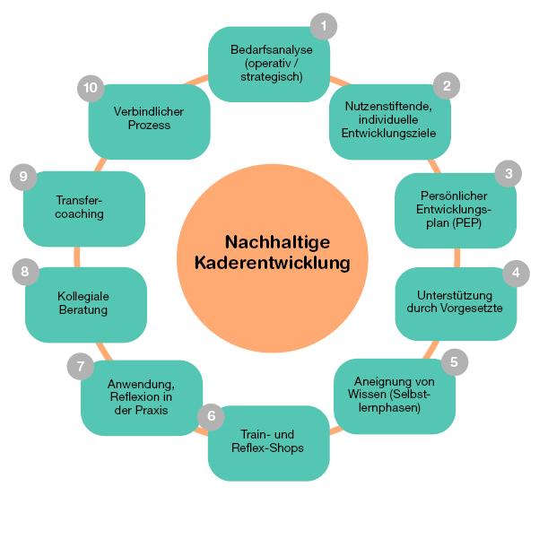 Gesamtarchitektur der neuen Führungsentwicklung mit integrierten Transfer-Elementen