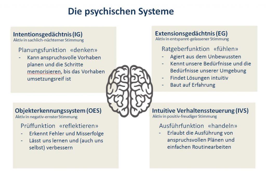 Die Psychischen Systeme