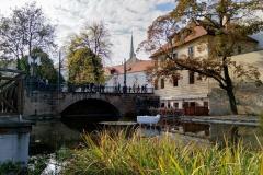 Sculpture in a river in Pilsen