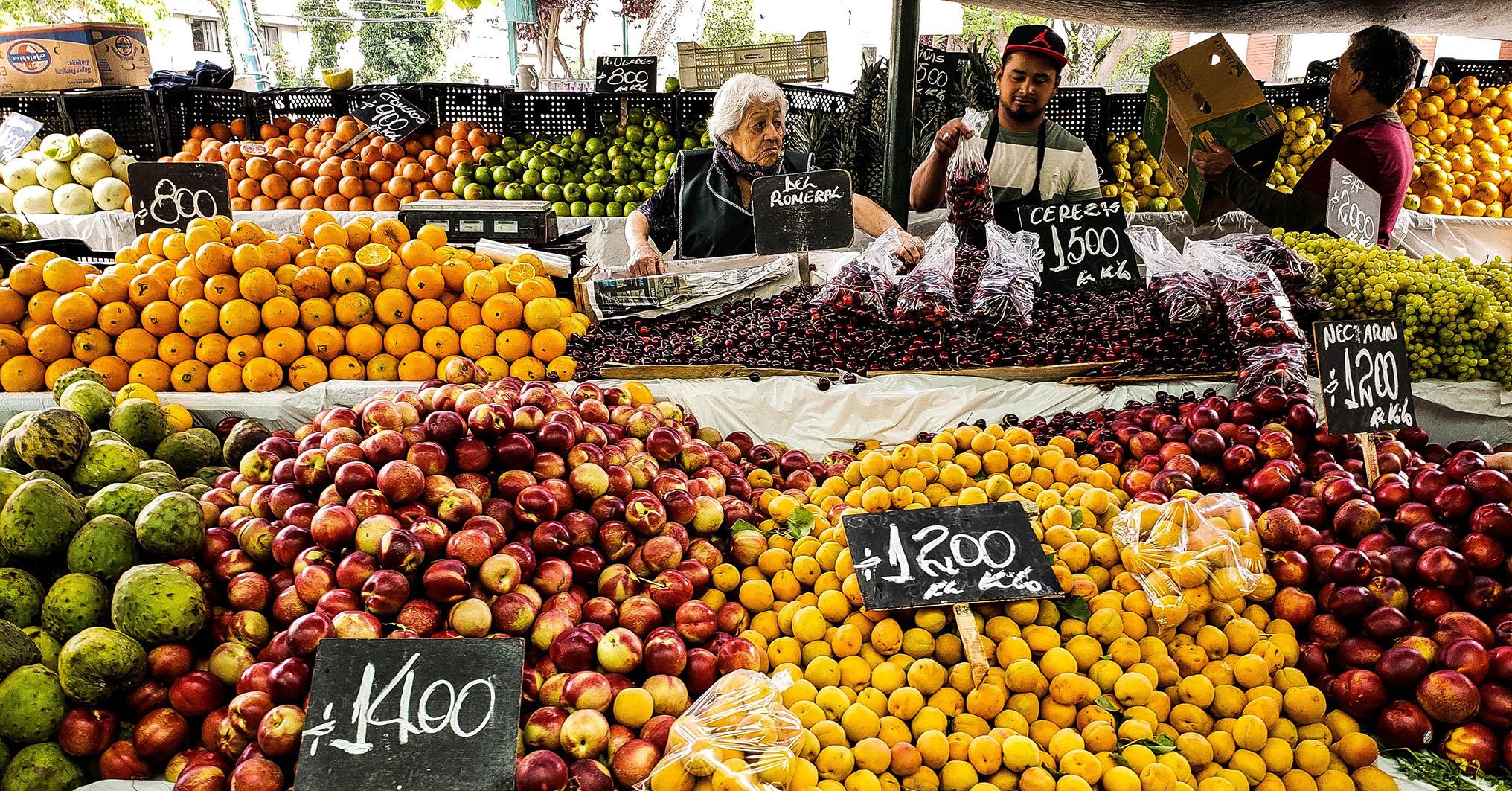 Praktikum Chile Markt ZHAW IUED