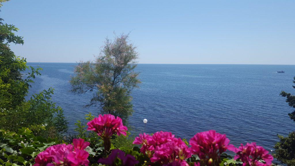 Marinas Sehnsuchtsort ist am Meer
