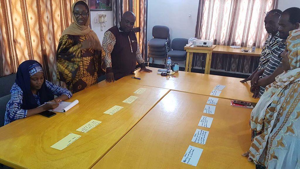 Stellvertretende Chefredaktorin von Studio Kalangou präsentiert eine erarbeitete Wirkungskette.