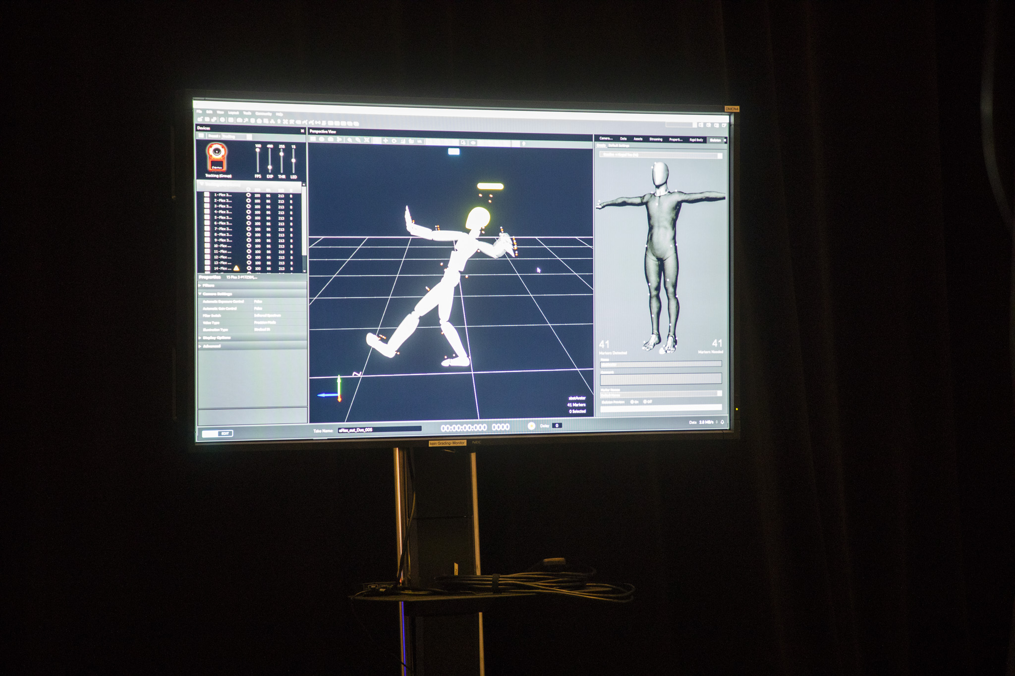 Motion Capture: Software