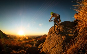 6877361-mountain-biking