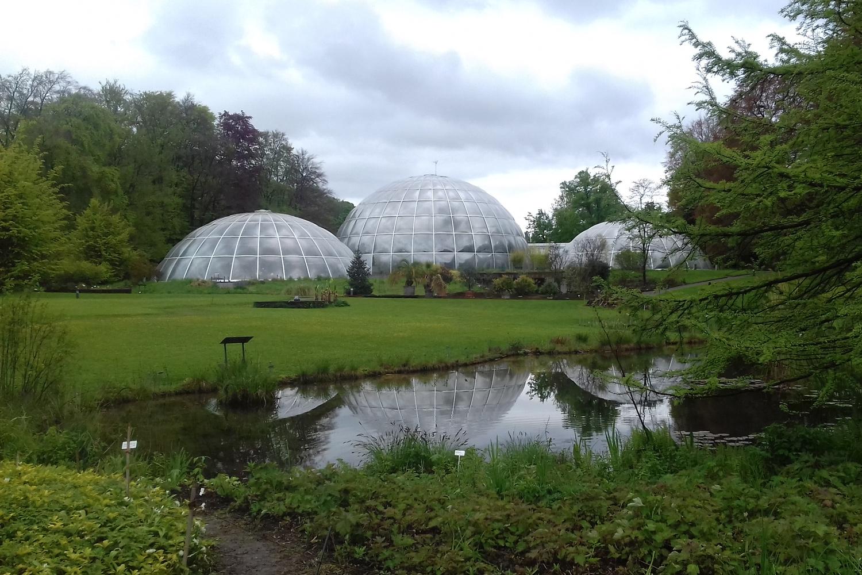 Kuppeln des botanischen Gartens in Zürich. Im Vordergrund ist ein Weiher und eine grüne Wiese zu sehen.