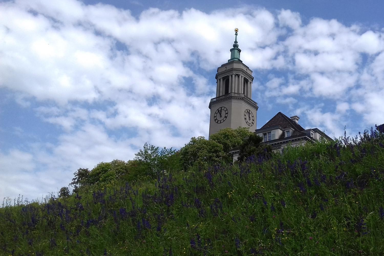 Die Zürcher Kirche Fluntern. Im Hintergrund der blaue Himmel mit Schleierwolken. Im Vordergrund eine grüne blühende Wiese.