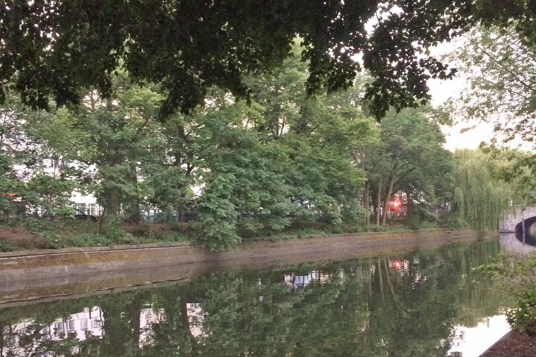 Berliner Fluss, gesäumt von vielen Bäumen und Büschen.