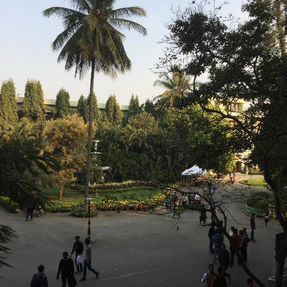 Parkanlage mit vorbei spazierenden Personen, Grünflächen, Blumen und Palmen.