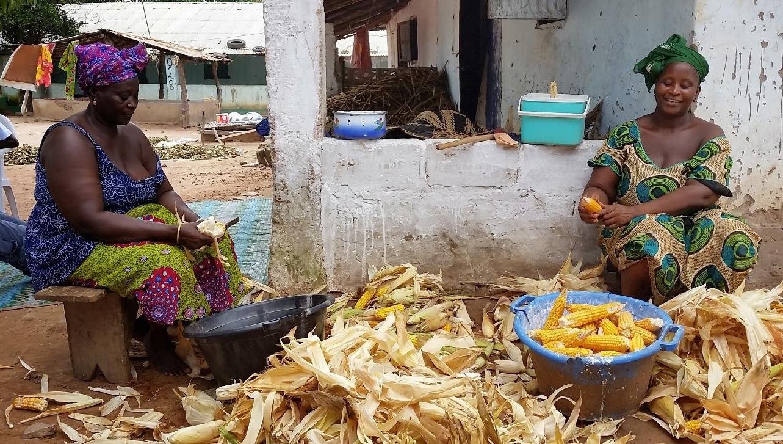 Zwei schwarze afrikanische Frauen sitzen in ihren Röcken auf Hocker und schälen Maiskolben.